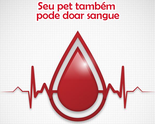 14 de Junho de 2015 – No Dia Mundial do Doador de Sangue